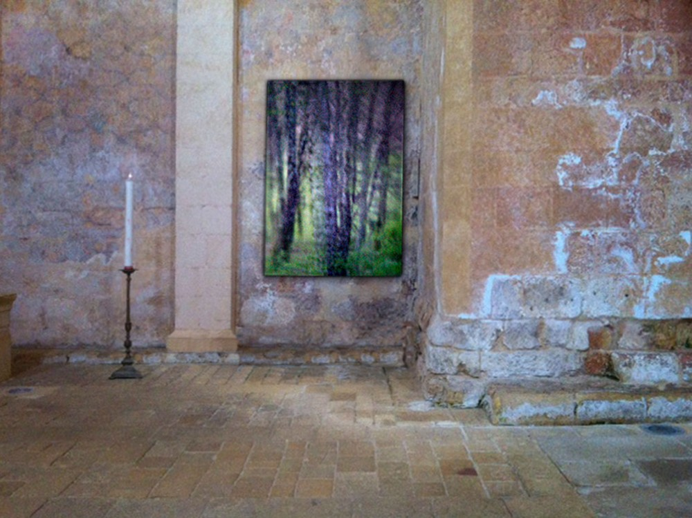 Planned: Photo exhibition in France 2014